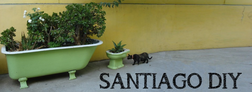 santiagodiy